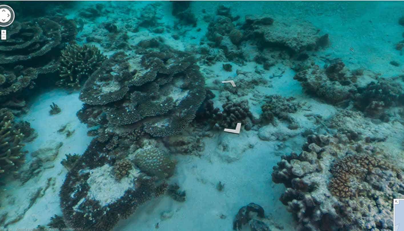 استمتع بالغوص في الحاجز المرجاني في خرائط Google من تحت الماء