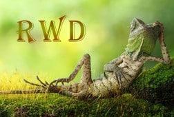 RWD التصميم سريع الاستجابة